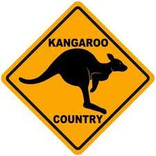 kangroo1