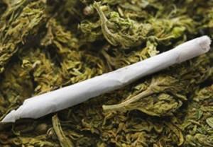 marijuana-kosher-joint-1217-e1347307795670
