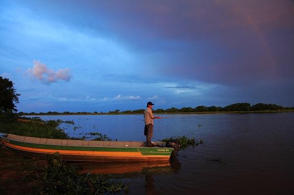 在夕阳 垂钓巴西潘塔纳尔湿地