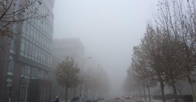 去年年底,作者于北京街头拍摄