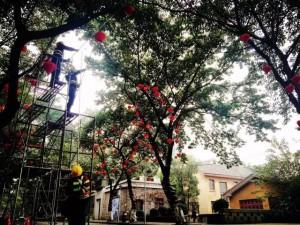 春节了,重庆的一些街道挂上了红灯笼