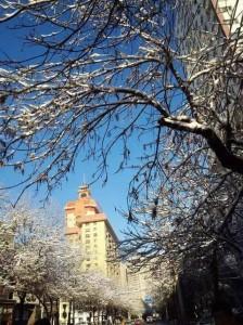 2015年11月,乌鲁木齐市区。那时候怀孕已7个月,入冬一来的第一场大雪,去和一个跟进了很久的一个客户签单的路上。