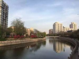 回北京后,在复兴门附近遛弯时拍下的照片