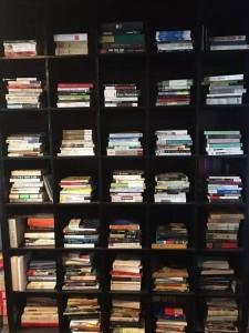 恶鸟的书房1